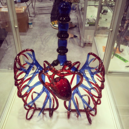 Heart and ling vascular bong