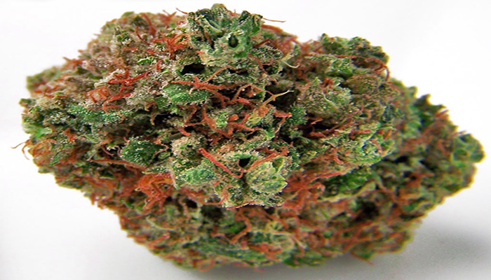 nug Picture of chiesel