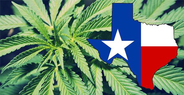 texas-weed
