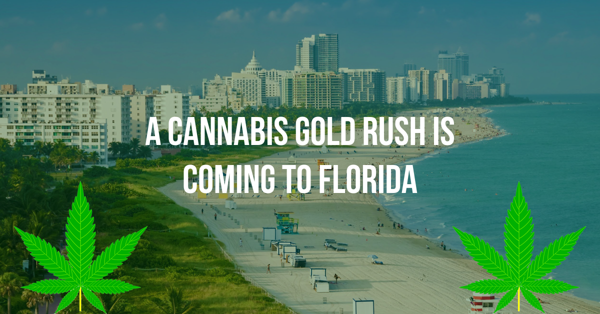 A Cannabis Gold Rush is coming to Florida