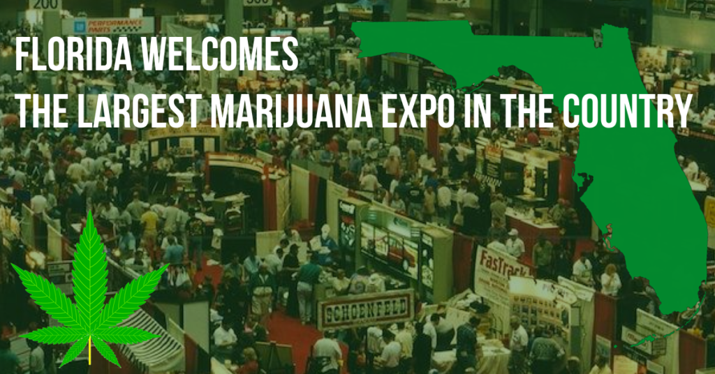 florida cannabis expo