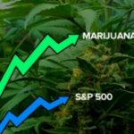 The Election is Coming, Cannabis Will be Legalized, and These Are Stocks to Buy!