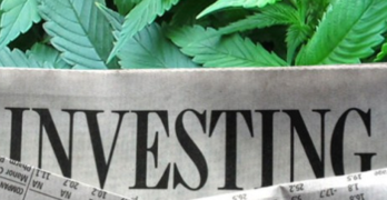 How to Make a Ridiculous Amount of Money Trading Marijuana Stocks.