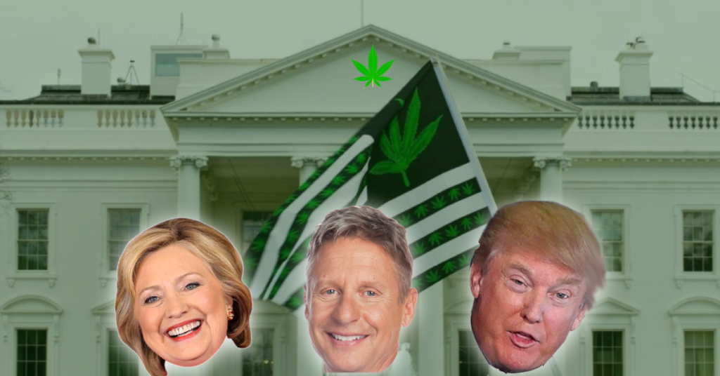 trump clinton Johnson cannabis