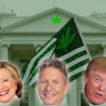 Who is the best Candidate for the Marijuana Community?