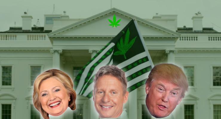 trump clinton Johnson cannabis